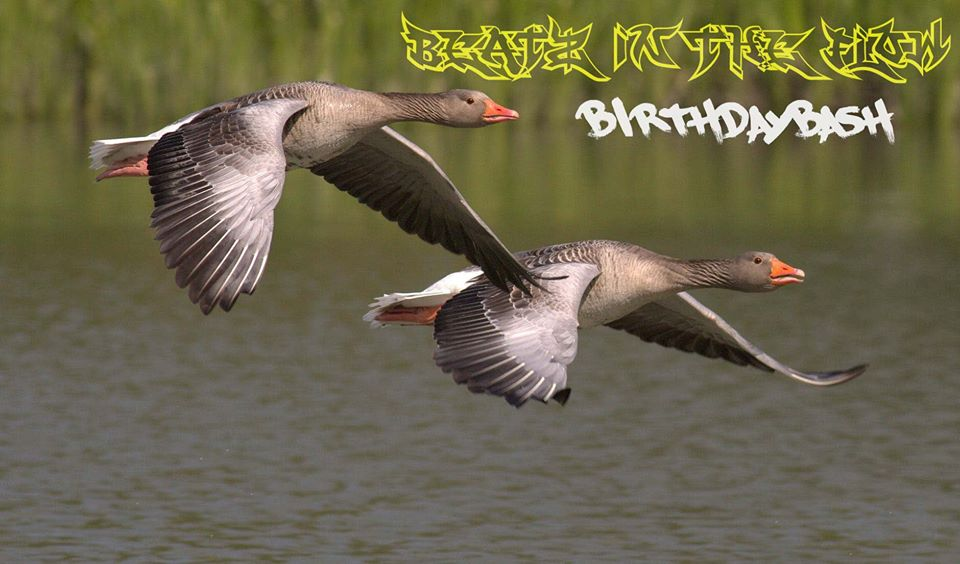Beatz in the Flow – Birthdaybash